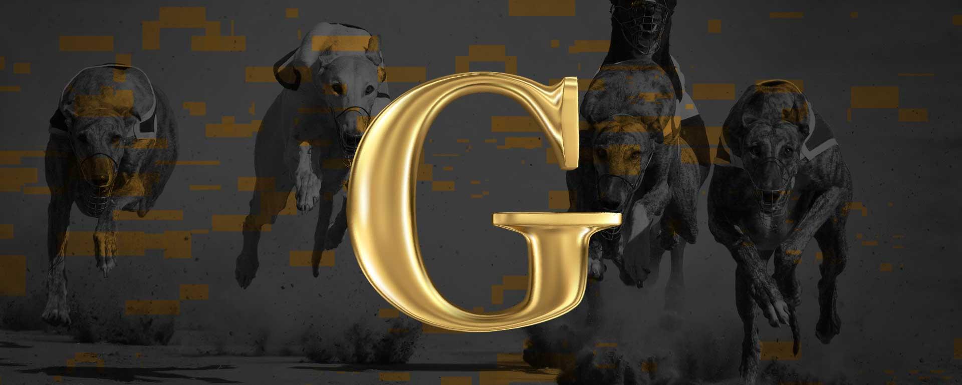 Golden Race – wirtualne wyścigi psów